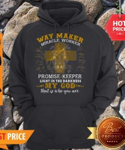 Lion Way Maker Miracle Worker Promise Keeper Light In The Darkness Hoodie