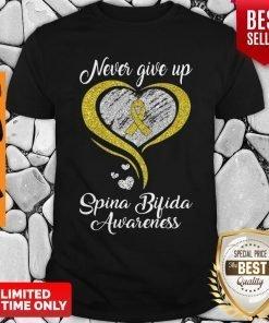 Heart Never Give Up Spina Bifida Awareness Shirt