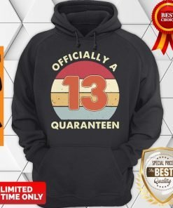 Officially A 13th Thirteen Quaranteen Birthday Quarantined 2020 Hoodie