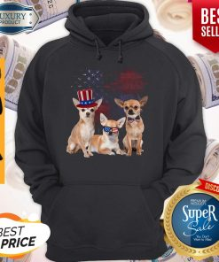 Chihuahua 4 Of July 4 American Flag Hoodie