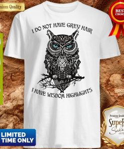 Funny I Do Not Have Grey Hair I Have Wisdom Highlights Owl Shirt