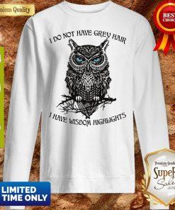 Funny I Do Not Have Grey Hair I Have Wisdom Highlights Owl Sweatshirt