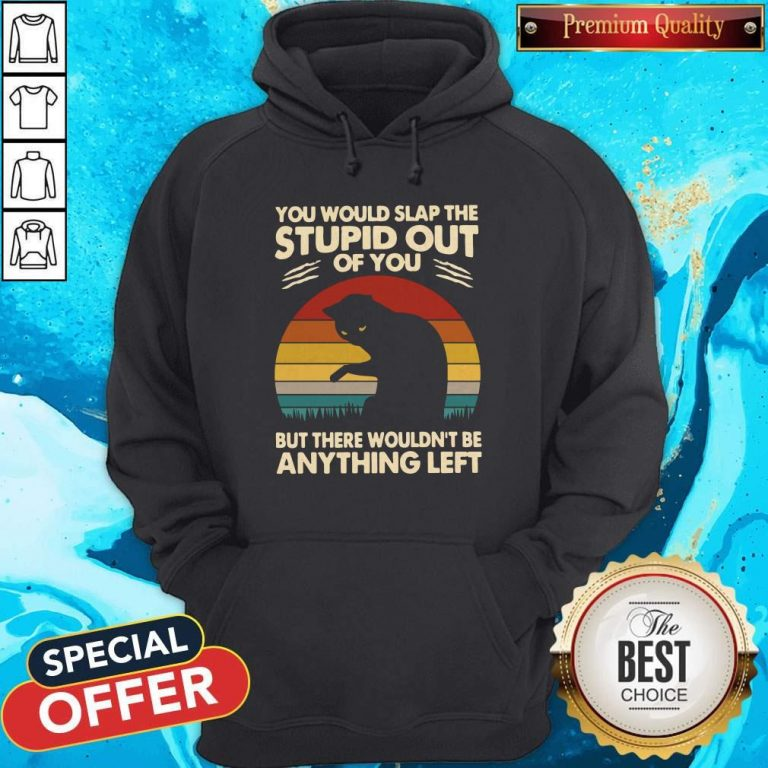 Cat You Would Slap The Stupid Out Of You But There Wouldn_t Be Anything Left Vintage Hoodie