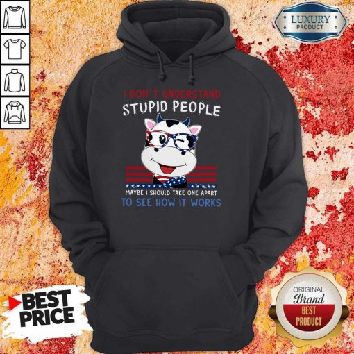 Dragon I Don't Understand Stupid People Maybe I Should Take One Apart To See How It Works Hoodie