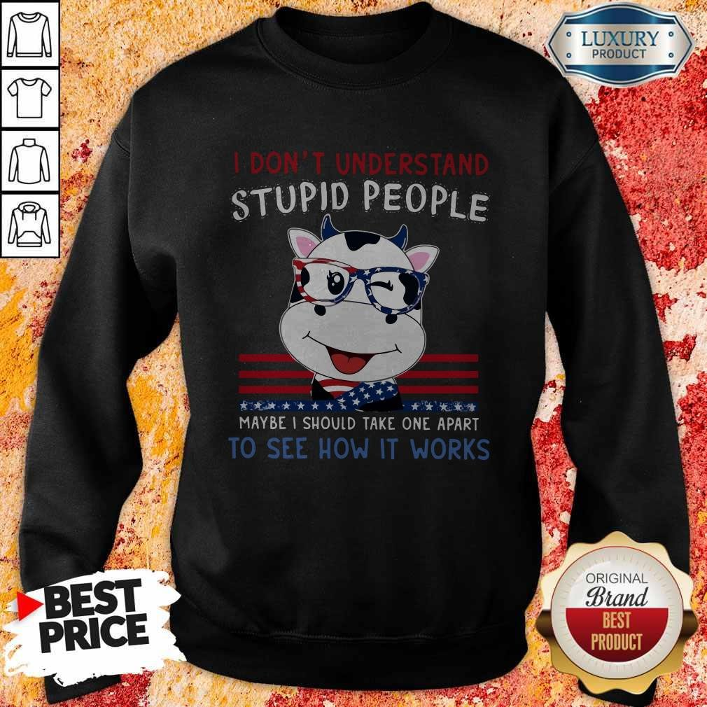Dragon I Don't Understand Stupid People Maybe I Should Take One Apart To See How It Works Sweatshirt