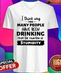 I Think Way Too Many People Have Been Drinking From The Fountain Of Stupidity V-neck