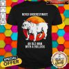 Never Underestimate Old Woman With A Bulldog Moon Shirt
