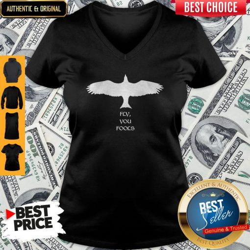 Perfect Fly You Fools V-neck