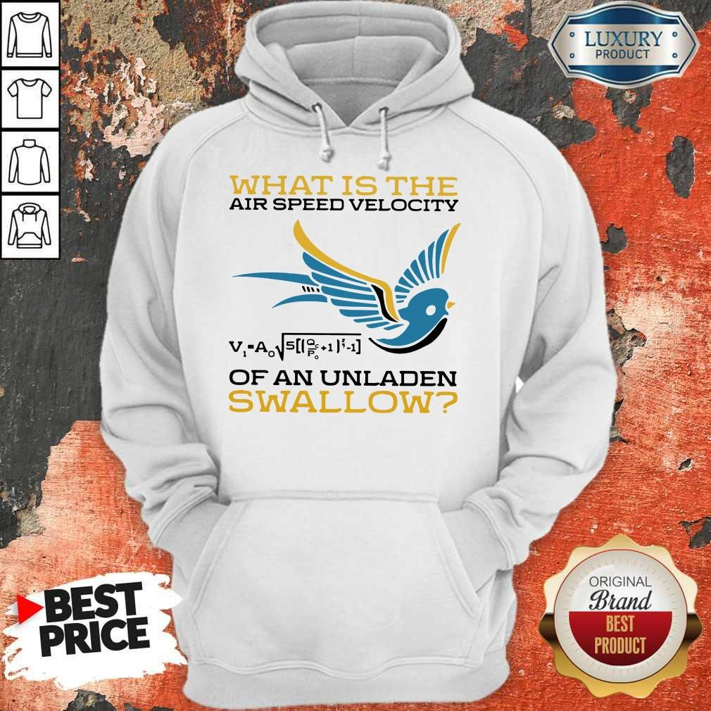 What Is The Air Speed Velocity Of An Unladen Swallow Math Hoodie