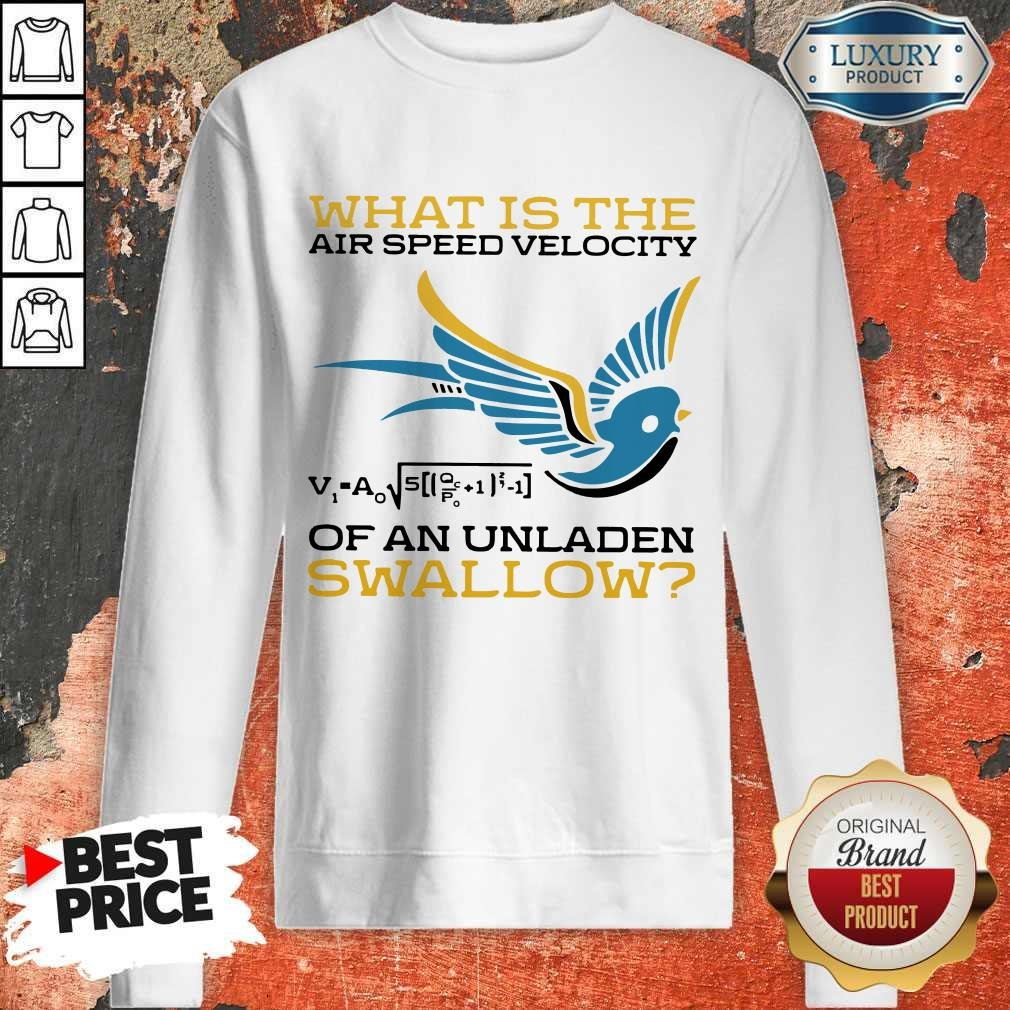 What Is The Air Speed Velocity Of An Unladen Swallow Math Sweatshirt