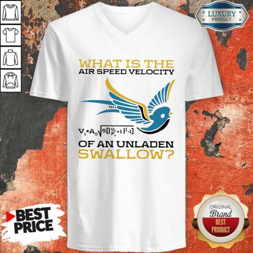 What Is The Air Speed Velocity Of An Unladen Swallow Math V-neck