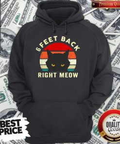 6 Feet Back Right Meow Vintage Hoodie