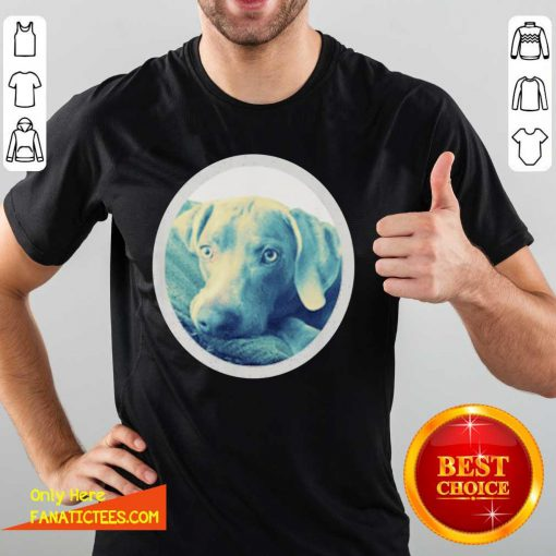Cailey The Weimaraner At Rest Shirt- Design By Fanatictees.com