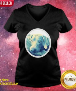 Cailey The Weimaraner At Rest V-neck- Design By Fanatictees.com