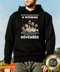 Never Underestimate A Woman Who Loves Dogs And Was Born In November Christmas Hoodie - Design By Fanatictees.com